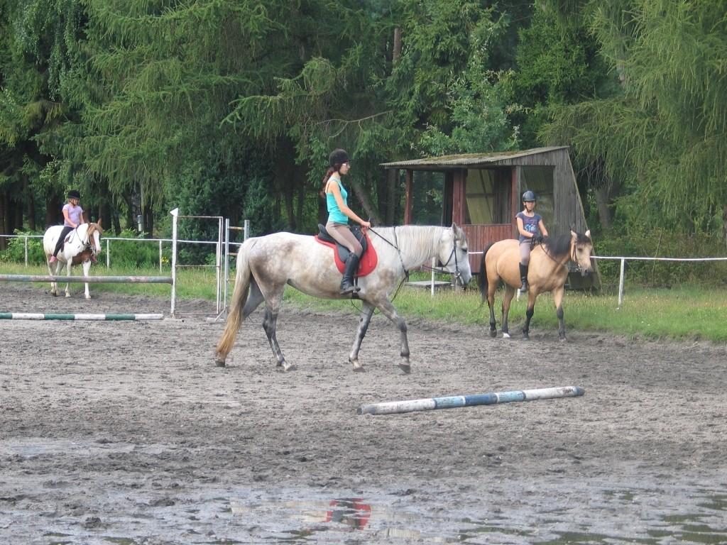 Nauka jazdy konnej dla młodzieży