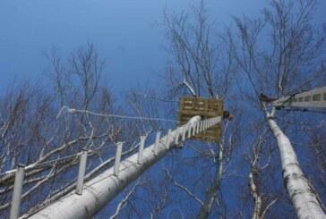 Park linowy Leśny Tabor