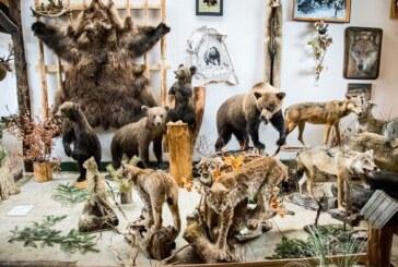 """Muzeum """"Knieja"""" w Nowosiółkach"""