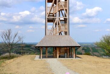 Spacer do wieży w Pruchniku