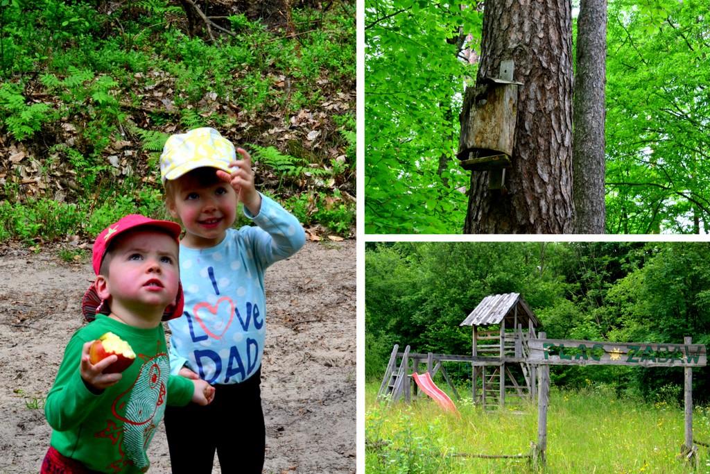 spacer po lesie z dziećmi