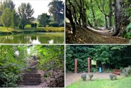 """Park """"Buczyna"""" w Górze Ropczyckiej"""