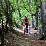 """Leśną ścieżką przez """"Buczynę"""""""