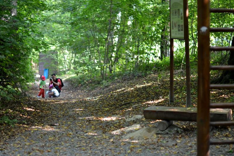 park-buczyna-gora-ropczycka-drzewa-dziecko