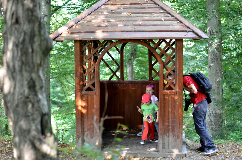 park-buczyna-gora-ropczycka-po-lesie
