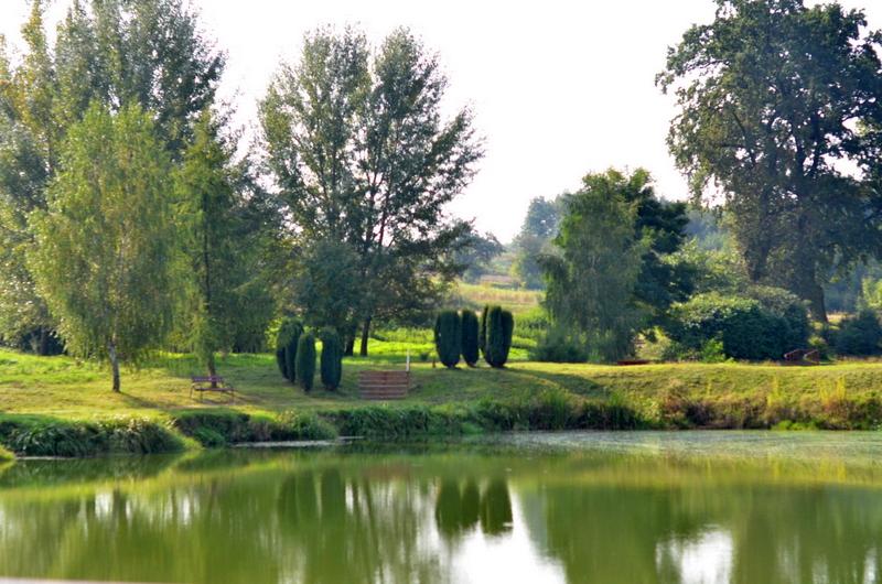 Zadbane otoczenie Parku Buczyna