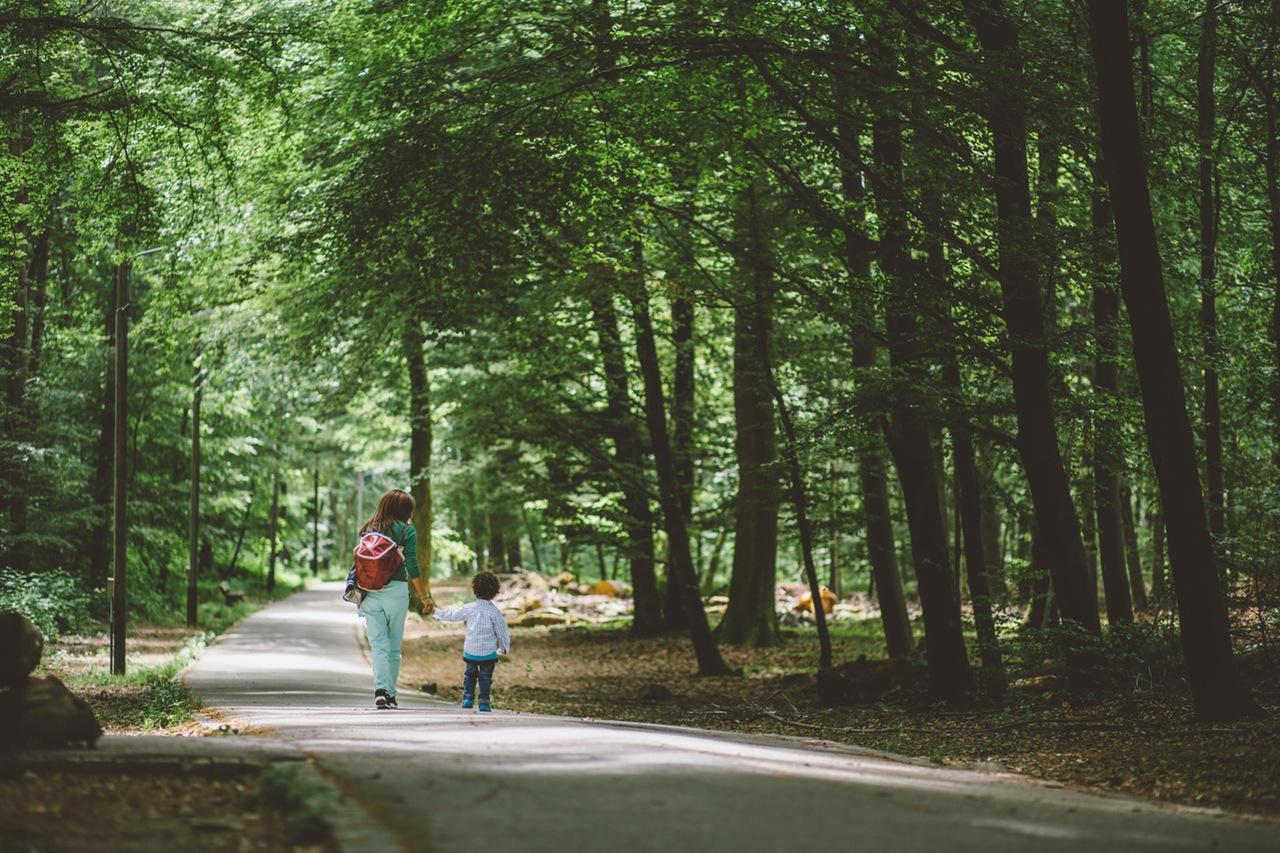Krótka wycieczka po okolicach Rzeszowa. 10 pomysłów na weekend z dzieckiem