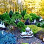 Ogrody i zwierzęta – z wizytą w Myczkowcach