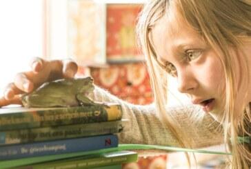 """""""Pan Żaba""""- film dla dzieci ciekawych świata"""