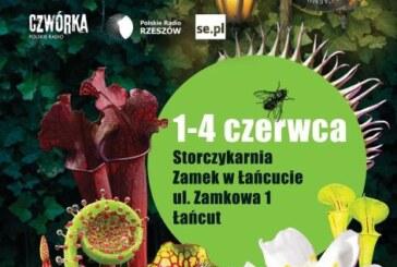 Festiwal Roślin Owadożernych, Łańcut
