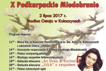 X Podkarpackie Miodobranie, Kołaczyce