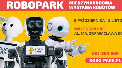 robopark-rzeszow-millenium-2020